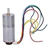 Acero Inoxidable GA25-370 Motor eléctrico de Alta torsión Motor de Engranajes de Metal Motor de(DC12V 1200RPM)