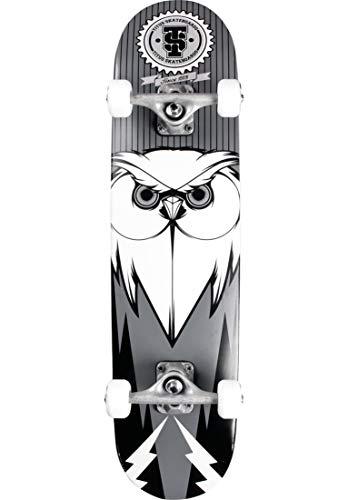 TITUS Complete-Board Blackbird Owl, Black-Grey-White, 7.75, Komplett Board, 7 Schichten Ahornholz, bereits fertig montiert, Skateboard für Jugendliche, Erwachsene, Anfänger, Profis, Mädchen und Junge
