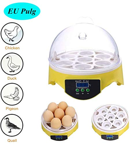 Mini incubadora, 7 huevos incubador completamente automático temperatura...