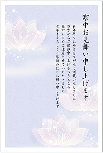 《官製 10枚》寒中見舞いはがき(No.862)《官製ハガキ/胡蝶蘭/裏面印刷済み》