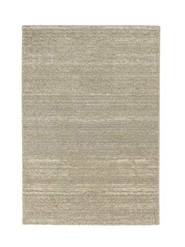 Teppich Samoa in Beige Rug Size: 200 x 290cm