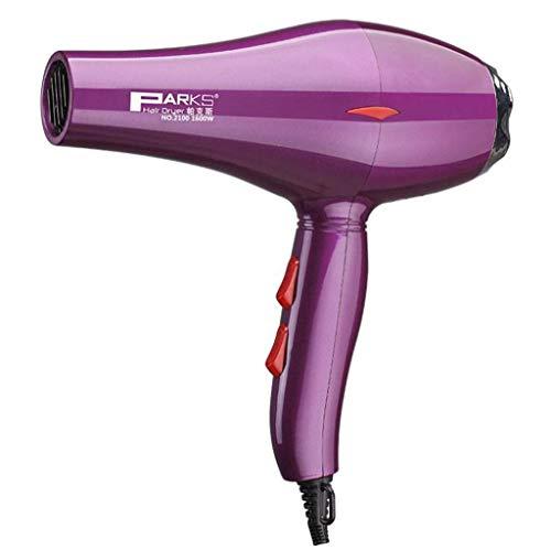 Sèche-cheveux, Sèche-cheveux ionique professionnel de salon 1600W avec 1 buse et 2 vitesses de chaleur 3, réglage du moteur à courant alternatif, séchage rapide, hommes femmes domestiques, Noir