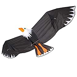 Eagle Kite for Kids and Adults