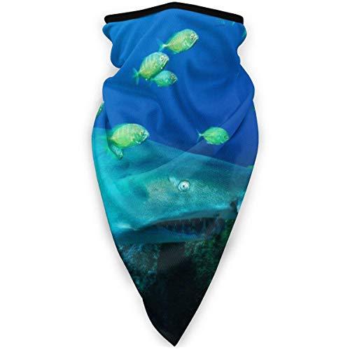 C/N arena tiburón verde mariscos al aire libre cara máscara de la boca a prueba de viento deportes máscara de esquí escudo bufanda bandana hombres mujer mens bufanda