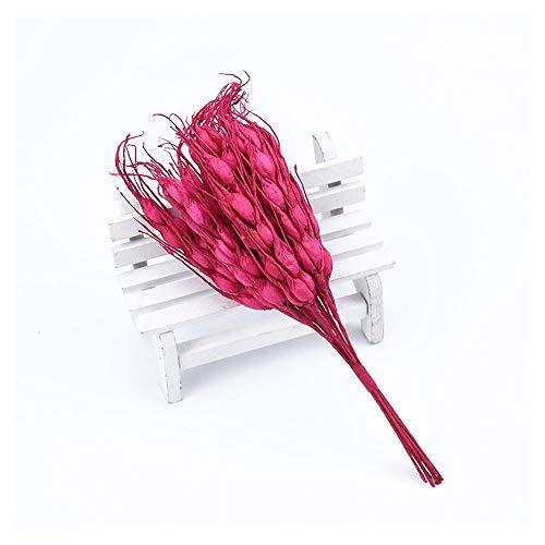 KAERMA 10pcs Plantes artificielles Bricolage Nouvelles Couronne de Noël de l'an Soie Fleurs de mariée for Les Oreilles de blé de Faux Album de décoration de Mariage DIY Fleur Artisanale