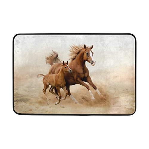 Klotr Zerbino, Baby Horse And His Mom Doormat,Area rug Rugs Non-Slip Indoor Outdoor Floor Mat Doormats for Home Decor 23.6 X 15.7 inch