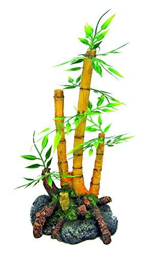 golf Japan Bamboe Plant