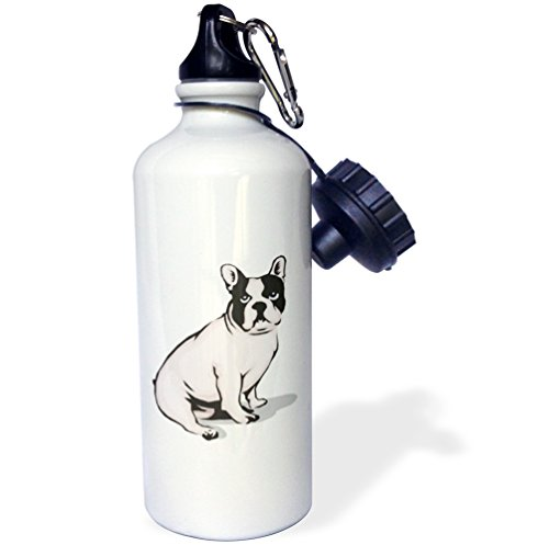 3dRose 'Cute and Cuddly Canine Sitting French Bulldog' Sports Water Bottle, 21 oz, White