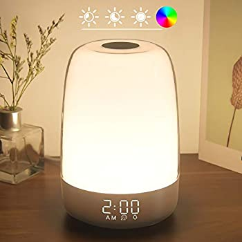 Touch Wake Up Night Light with Sunrise Simulation Alarm Clock Winshine 3 Ways Dimmable Warm White Bedside Lamp for Kid Bedrooms RGB Ambient Table Nightstand Light,Sleep Aid Snooze Timer Mode