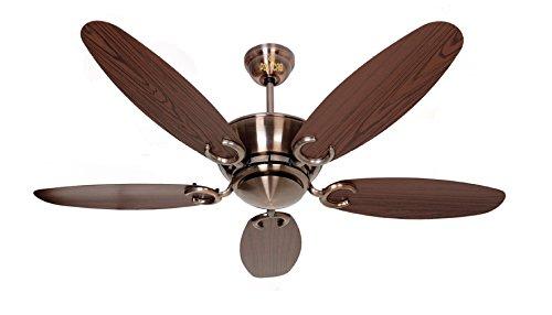 Polycab Superia Lite SP04 1200mm Decorative Ceiling Fan -...
