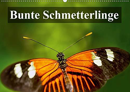 Bunte Schmetterlinge (Wandkalender 2021 DIN A2 quer)