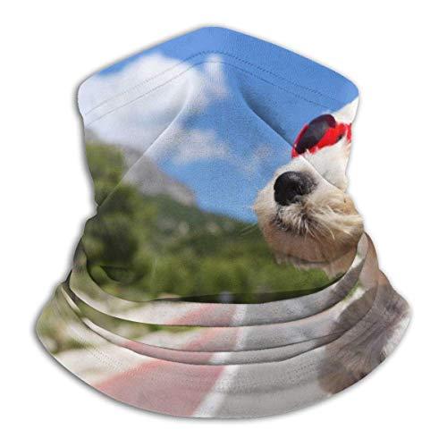 Nifdhkw West Highland White Terrier Perro Gafas de Sol Coche Cuello Polainas Calentador Unisex Esquí Cuello Sombreros para Mujeres Hombres Al Aire Libre