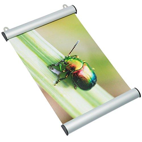 DELIGHT DISPLAYS Klemmschiene Snap aus Alu DIN A0 Posterschiene Posterleiste Plakatschiene 841 mm