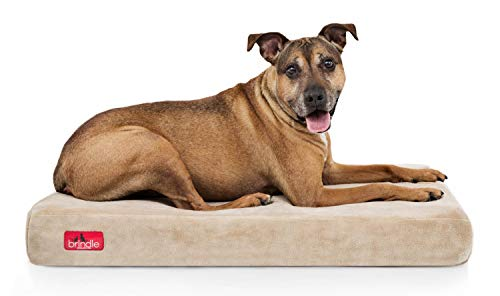 Brindle Waterproof Bed
