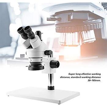 Nannday Microscopio estereoscópico trinocular...