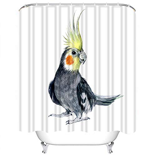Houlor Shower Curtain Set Watercolor Cockatiel Isolated on White Cockatoo Animal Polyester Waterproof Target Non-PVC Spa Decor Bathroom Fashion Bathing Set with Hooks 72x72 Inches