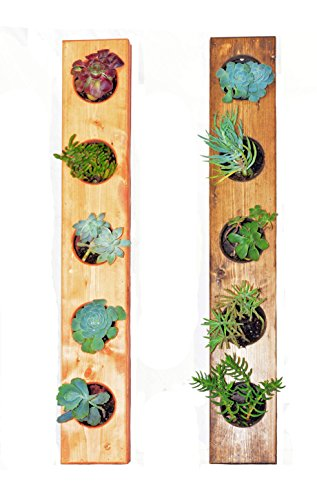 The Circculent 5-Pocket Wooden Vertical Garden Planter - Living Wall Planter -...