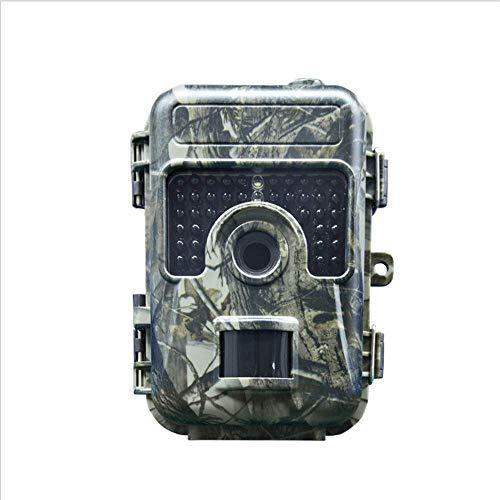 LYHLYH 5 miljoen HD geen Alone Wildlife camera met infrarood nachtzicht tot 65 ft IP66 waterdichte camera camera geactiveerd voor stroom, 32G SD-kaart