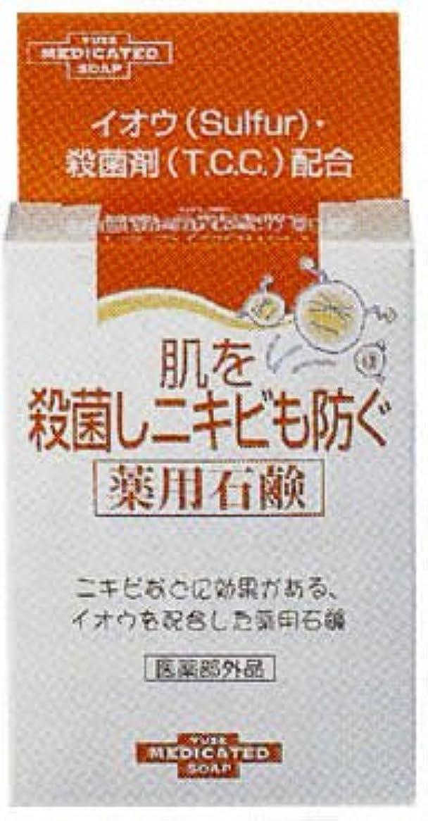 ツールお金罰する肌を殺菌しニキビも防ぐ薬用石鹸 110g