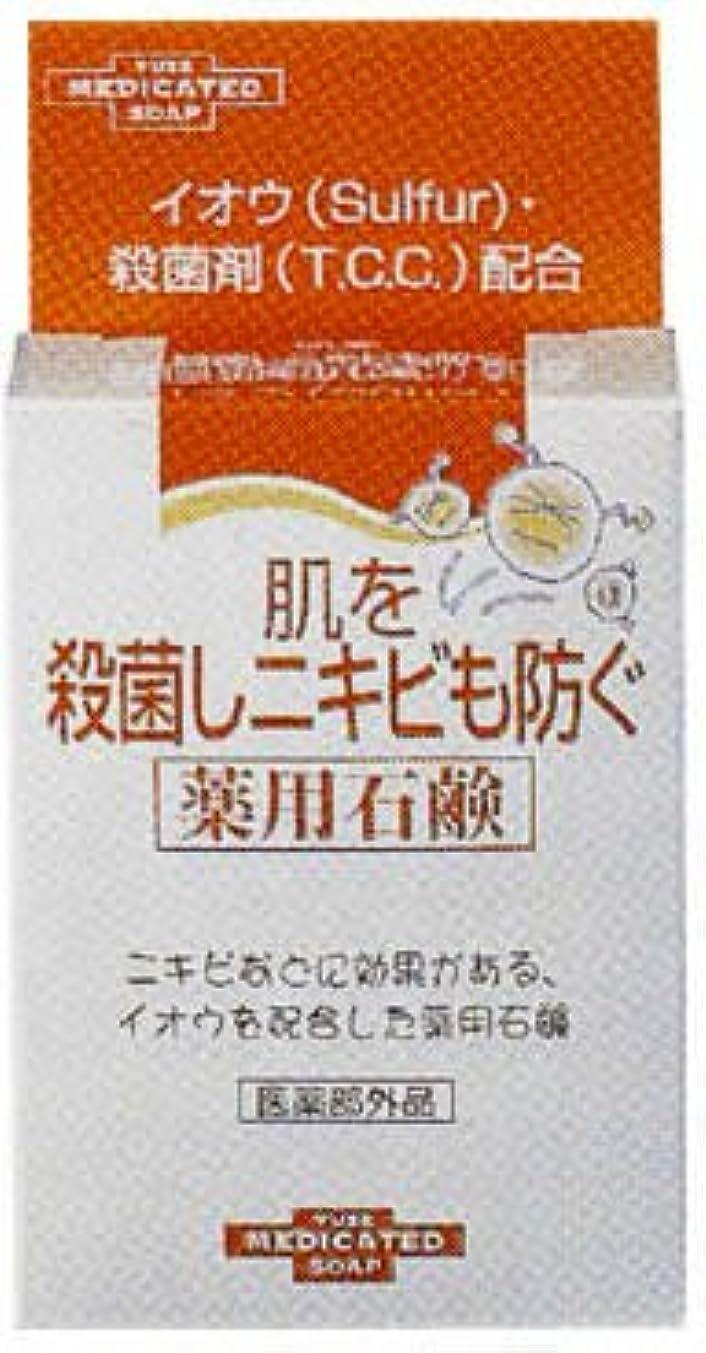 させるアプトネブ肌を殺菌しニキビも防ぐ薬用石鹸 110g