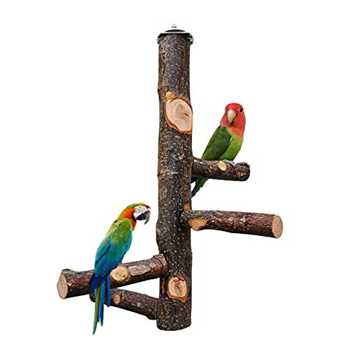 Perchas para Pájaros, Perchas De Madera Natural para Loros para Jaulas, Accesorios para Perchas De Ramas para Jaulas y Pajareras - para Cacatúas, Guacamayos, Loros, Pájaros del Amor y Pinzones