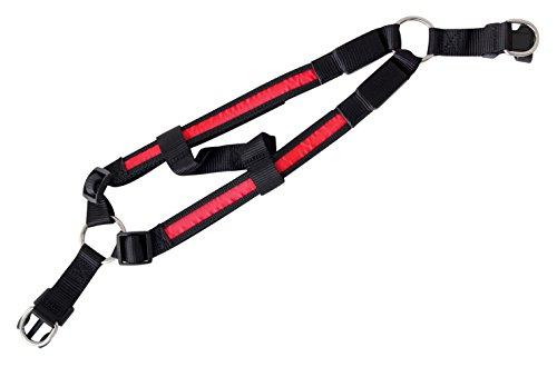 Arnés para los Perros LED Iluminado Collar arnés Ligero arnés en el Color Rojo S de la Marca PRECORN
