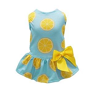 Fitwarm Lemon Summer Dog Dress Puppy Clothes Doggie Sundress Pet Vest Cat Apparel Water Blue Large