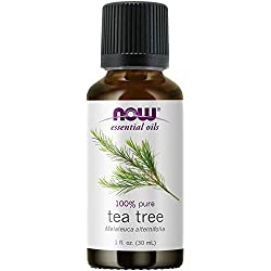 now solutions tea tree oil