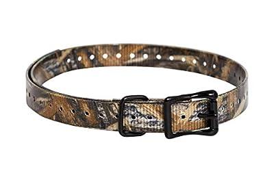 SportDOG Brand 3/4 Inch Collar Strap from SportDOG Brand