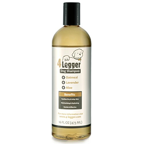4-Legger Organic Oatmeal Dog Shampoo with Aloe and Lavender Essential Oil - All Natural Safely Soothe, Condition and Moisturize Normal to Dry, Itchy Sensitive Skin - Made in USA - 16 oz