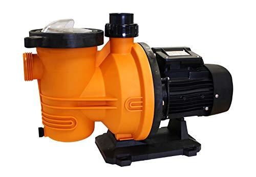 Gibbons FCP750S - 1 HP Swimming Pool Pump 0.75 kW 1HP 230V, Self Priming,...