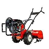 GrecoShop Motozappa/Trattore/Motocoltivatore 4 Tempi a Benzina con retromarcia 212cc 6,5HP - C-T202