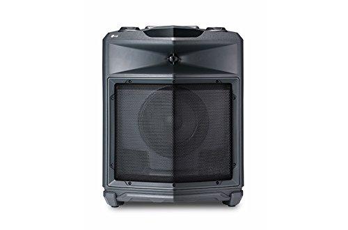 LG FJ3 Mono Lautsprecher (50W, Bluetooth, USB, FM Radio)