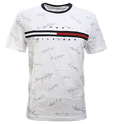 Tommy Hilfiger Mens Classic Fit Big Logo T-Shirt (X-Large, White (Silver Tommy Hilfiger Signature))