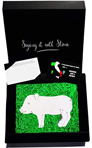 Micro Pig aus Stein - Symbol für Glück, Liebe, Freundschaft, Intelligenz, Wohlstand und neues Kapitel im Leben - Box und Nachrichtenkarte enthalten - Vatertag Geschenk Glücksbringer