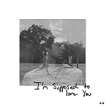 I'm Supposed to Love You