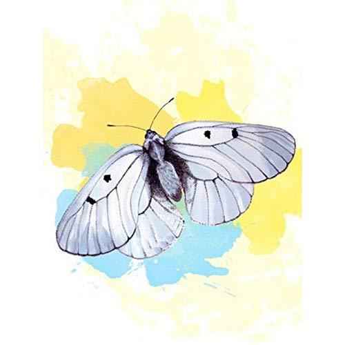 Lazodaer - Kit de pintura de diamante para adultos, niños, decoración del hogar, regalos de oficina para ella con mariposa blanca, 30 x 39 cm
