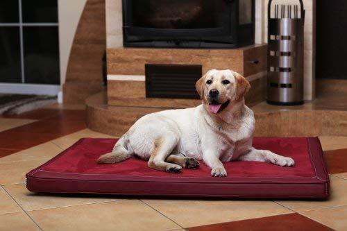 tierlando Carlos Ortho-Medic Orthopädische Hundematte Velours-Kunstleder VISCO Hundebett Größe: XL - 120x90cm | Farbe: 04 Bordeaux