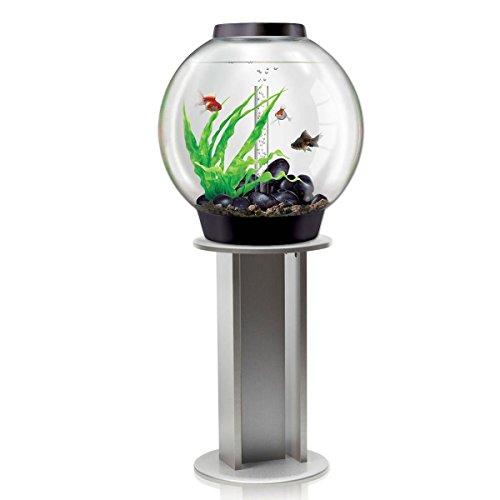 biOrb Classic - Acquario da 60 l, Colore: Nero con Illuminazione LED MCR e Supporto Argentato