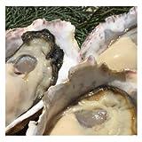 瀬戸内産 殻付き牡蠣3kg前後 約36~44個 加熱用 お試し たいの鯛【離島は別途送料必要】 生牡蠣