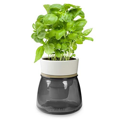 Kräutertopf mit Bewässerungssystem | LIVANA Home Selbstbewässernder Kräutertopf (grau)