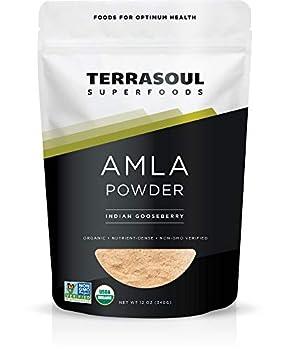Terrasoul Superfoods Organic Amla Berry Powder  Amalaki  12 Oz - Rich in Antioxidant Vitamin C | Supports Immunity