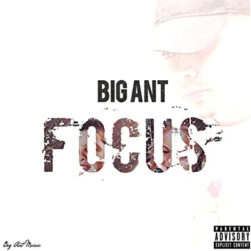 BigAntMusic