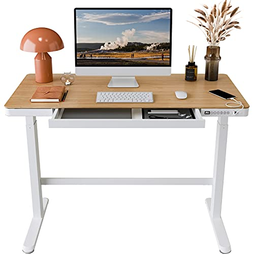FLEXISPOT Comhar Standing Desk with Drawers Electric Sit Stand up Desk with Storage 48 x 24 Inches Bamboo Texture Desktop and Height Adjustable White Frame (USB Charge Ports, Child Lock)