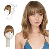 FESHFEN Clip in Bangs 100% Remy Echthaar One Piece Clip in Pony Fringe Bang Extension Verlängerung...