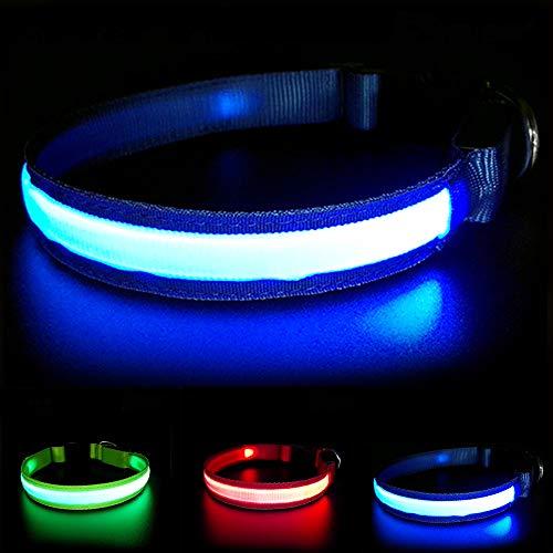 MASBRILL Wiederaufladbar LED Hund Halskette Halsband perfekt für Haustiere Hund - Wasserdicht (L, Blau)