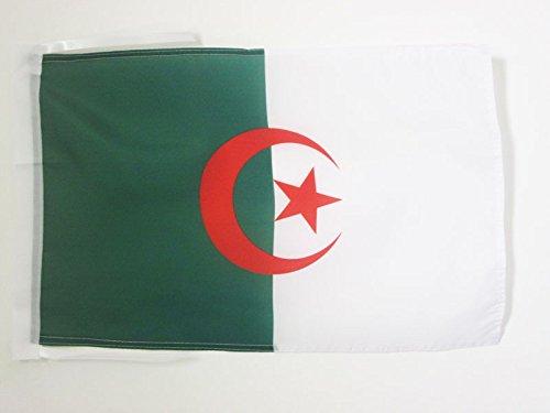 AZ FLAG Flagge ALGERIEN 45x30cm mit Kordel - ALGERISCHE Fahne 30 x 45 cm - flaggen Top Qualität