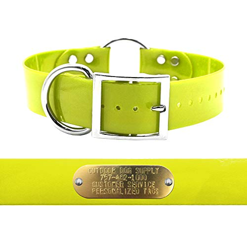 "Heavy Duty D Ring & Ring in Center 1 1/2"" Wide Hunting Dog Collar with Free Brass Name Plate (Neon Yellow)"