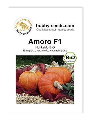 Amoro F1 BIO Kürbissamen von Bobby-Seeds Portion