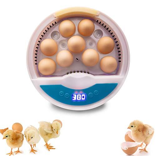 KKTECT Brutmaschine 9 Eier Vollautomatisch Hühner Eier Brutgerät, mit Effizienter LED Beleuchtung Schlupfmaschine mit einem Knopfdruck für Kinder für Chicken Duck Bird Quail